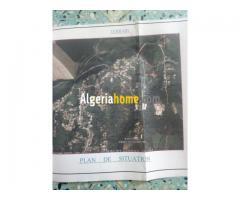 Vente Terrain Alger 2020
