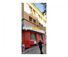 Location Immeuble Tlemcen