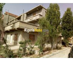 Location Immeuble Ain beida