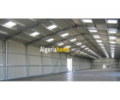 Location Hangar El kerma