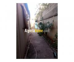 Maison a vendre a Tiaret