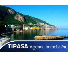 Location vacances Tipaza