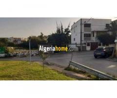 Vente terrain Alger Kouba