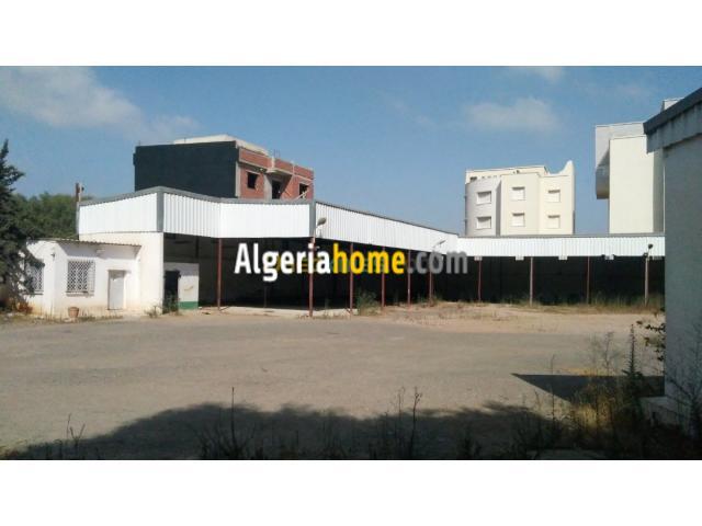 Location Hangar Alger Said hamdine
