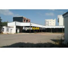 Location Hangar Alger Said hamdine